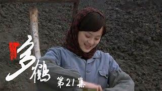 小姨多鹤 21 | Auntie Duohe 21 (主演:孙俪 姜武 闫学晶)