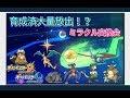 【ポケモンuウルトラサン・ムーン】育成済みをミラクル会