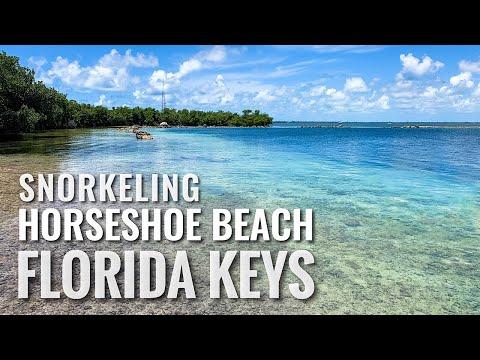 Florida Keys - Snorkeling Horseshoe Beach in Big Pine Key [4K]