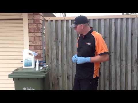 Perth Pest Control Special
