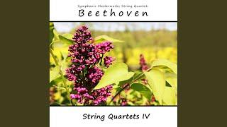 String Quartet No. 4, Op. 18 No. 4: II. Scherzo. Andante scherzoso quasi allegretto