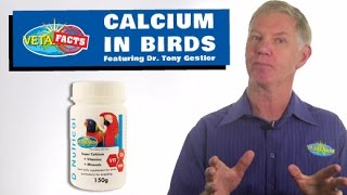 Calcium in Birds