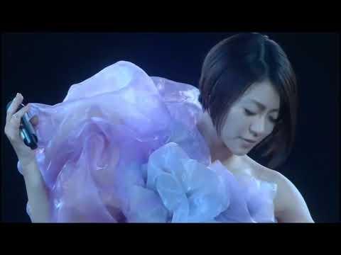 宇多田光 Utada Hikaru - Goodbye Happiness / Traveling. Wildlife Live 2010. YokoHama Arena. December 8-9.