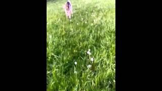 Koziołek anglonubijski