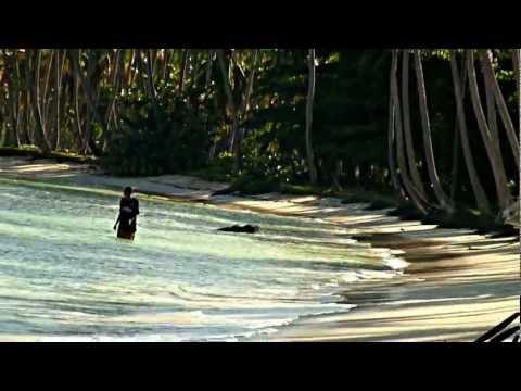 caribbean-beaches---youtube
