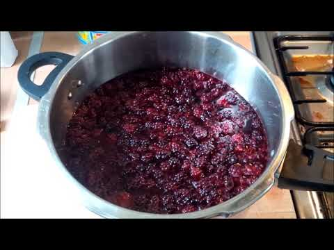 A Basic Way Of Making Blackberry Wine
