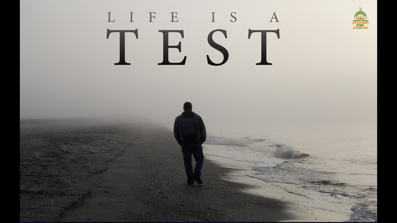 Image result for life is a test