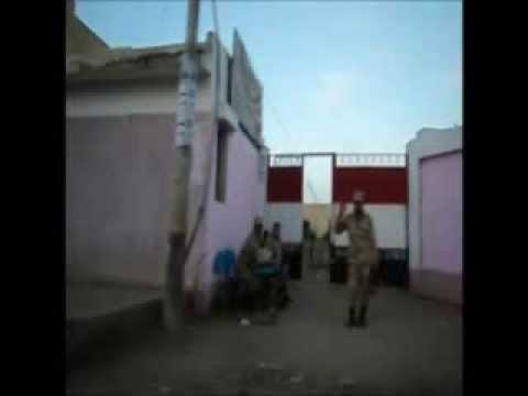 فيديو يوضح انعدام الاقبال فى مدرستى التجارة و طارق بن زياد بالمطرية دقهلية
