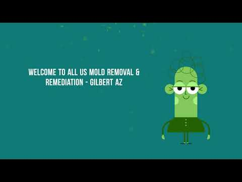 Professional Mold Removal and Remediation in Gilbert AZ