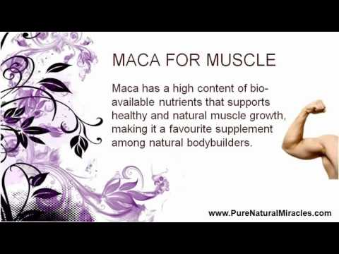 Maca Powder Organic Raw - 10 Amazing health benefits for Men looking to improve health