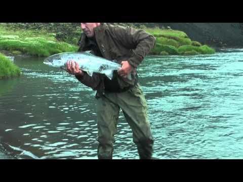 Salmon Fishing On The East Ranga. Iceland 2010