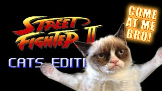 Street Fighter: Cats Edition - Marca Blanca thumbnail