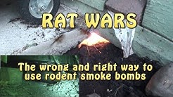 RAT WARS: The wrong & right way to use rodent smoke bombs