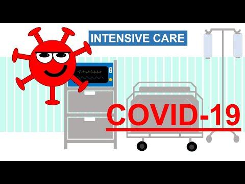 COVID 19 / SARS-Cov-2 / 2019-nCoV
