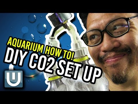 DIY Co2 for your Aquarium