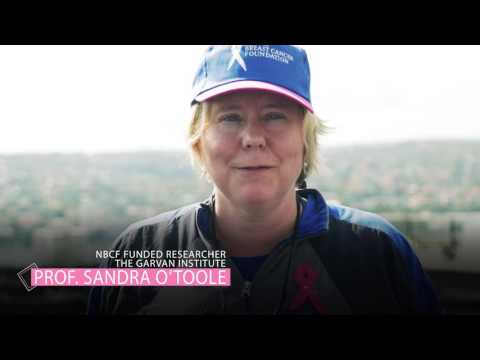 Bridge to 2030: Climb for Breast Cancer Research (Community Supporters)