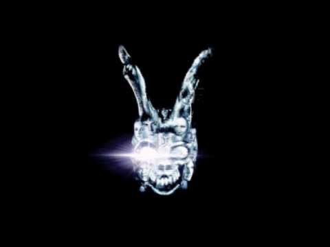Donnie Darko the artifact & living