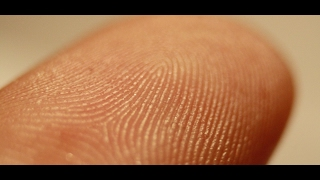 WHAT FINGERPRINT SAYS ABOUT YOU