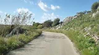 Κάστρο  Καλογριάς -Δάσος  Στροφιλίας  2012 P1030700.MP4