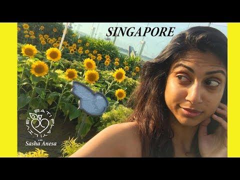 SINGAPORE - Play - EPL Sasha