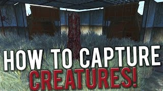 Fallout 4 - How To Capture Creatures in Wasteland Workshop DLC