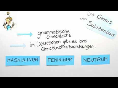 Genus des Substantivs | Deutsch | Grammatik