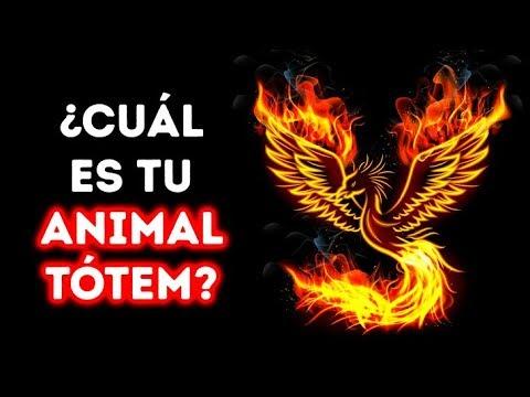 ¿Cuál es tu animal tótem?