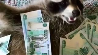 He loves money