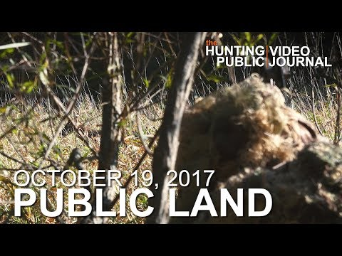 Public Land Day 19: Ghillie Hunt, Close Encounters on the Ground | The Hunting Public