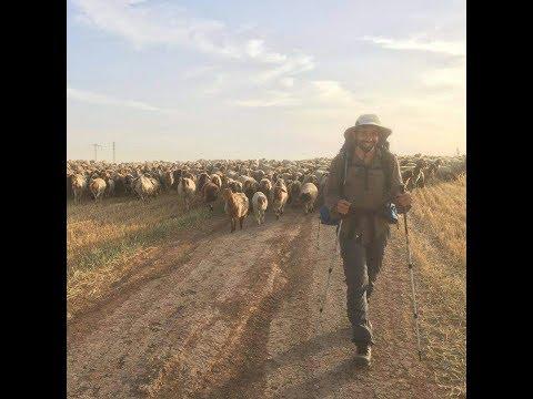 Israel National Trail 2017  שביל ישראל