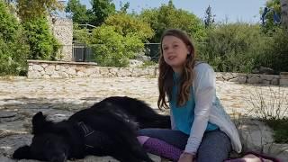 ילדים מדברים כלבים - כלב סל