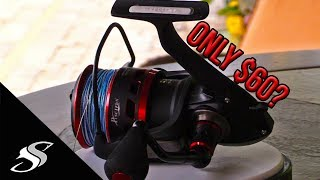 I May Have Found One of the Best Spinning Fishing Reels for the Money!
