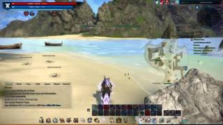Mother's Tears Quest TERA