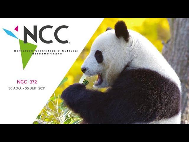 Noticiero Científico y Cultural Iberoamericano, emisión 372. 30 de agosto al 5 de septiembre de 2021