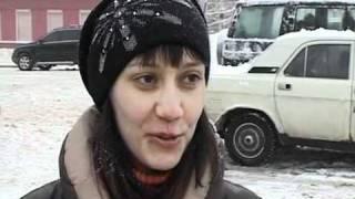 """""""Руку помощи"""" протянули бездомным животным в Череповце"""