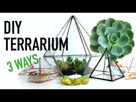 △ DIY Geometric Glass Terrariums - 3 Ways! DIY DUPES #4