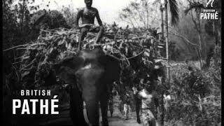 Assam Prepares To Receive Dalai Lama (1959)