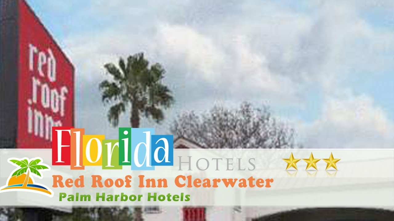 Red Roof Inn Clearwater   Tarpon Springs   Palm Harbor Hotels, Florida