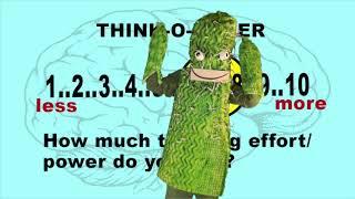 Practice the Cactus - Practice Awareness Episode 1
