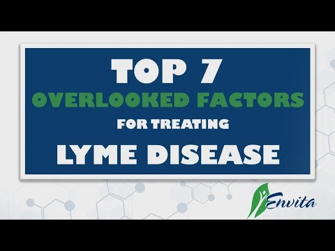 The Top 7 Overlooked Factors For Treating Lyme Disease