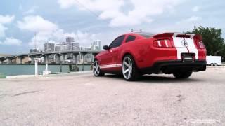 Ford Mustang Shelby GT500(Технические характеристики данной модели: Модельный год 2007 Тип кузова Купе Длина, мм 4765 Ширина, мм 1877 Высота..., 2014-08-02T18:21:46.000Z)