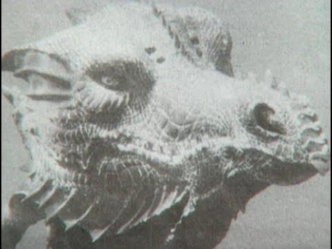 Rainbow Serpent, Turkish Lake Monster, Werewolves