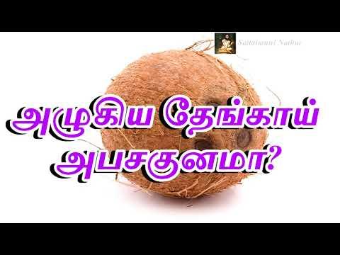 அழுகிய தேங்காய் அபசகுனமா? - Sattaimuni Nathar