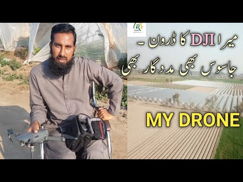 My DJI DRONE, how i look after my agriculture fields |Drone use in agriculture, Hindi/Urdu, IR FARM
