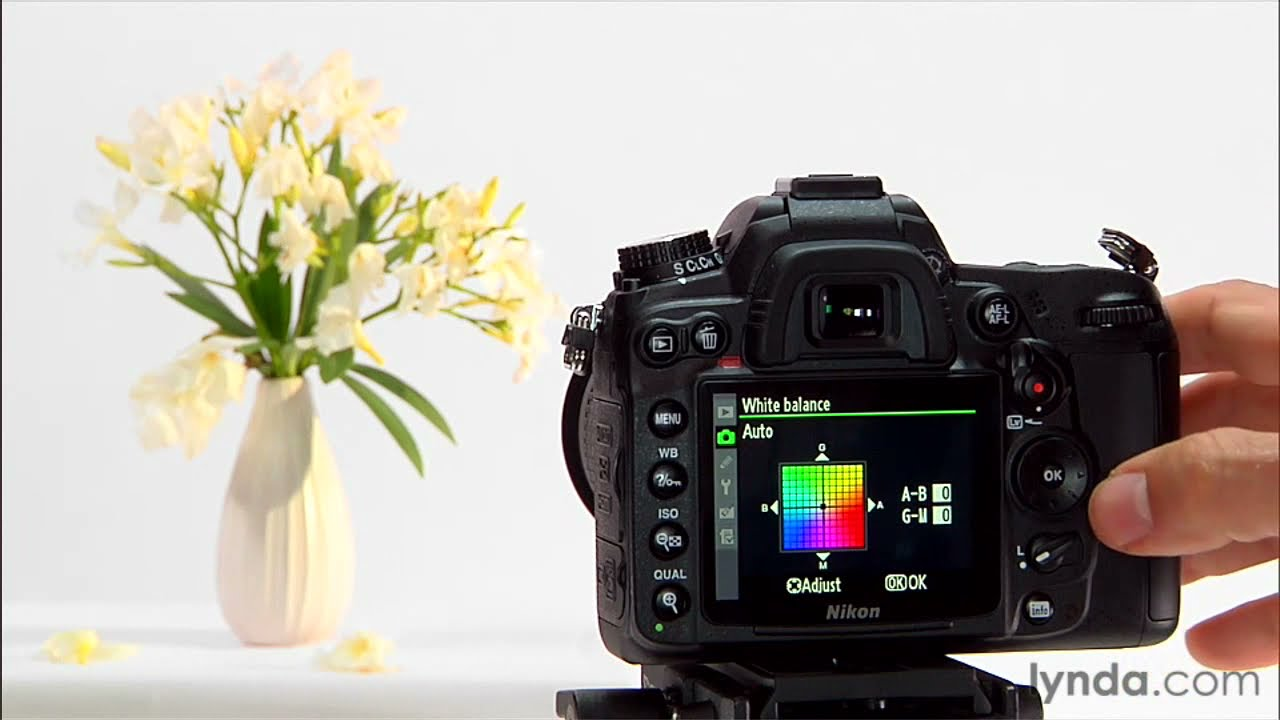 Nikon D7000 Tutorial: Using The White Balance Settings
