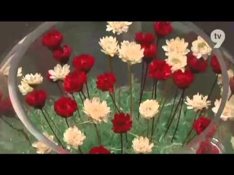 The Secret Garden: Little Flower on Safiyya TV9 Malaysia