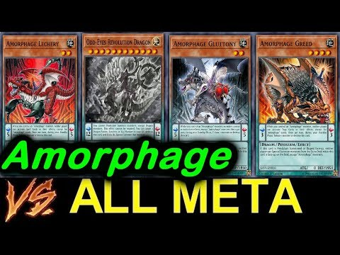 Amorphage VS ALL META!! New Support!! 【LINK SUMMON】