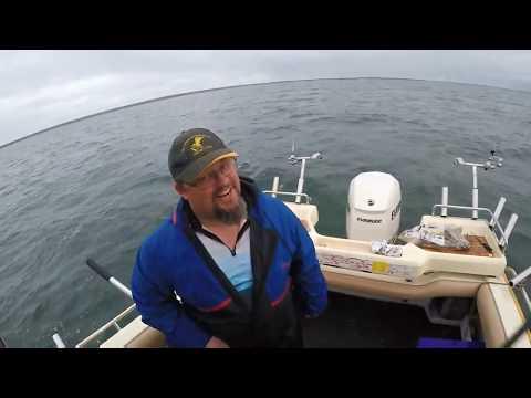 80cm Port Victoria Snook