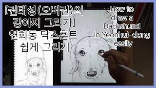 [권태성(오버권)의 강아지 일러스트]연희동 닥스훈트 쉽…