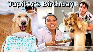Jupiters Birthday Celebration!🐶🌈 (he turned 4!!🥺)